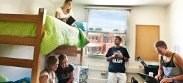 student rooms acommodation dublin 262x119 Report Highlights Chronic Shortage of Student Housing